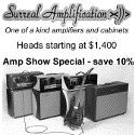 Surreal Amplification